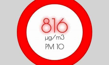 816 ПМ-10 честички
