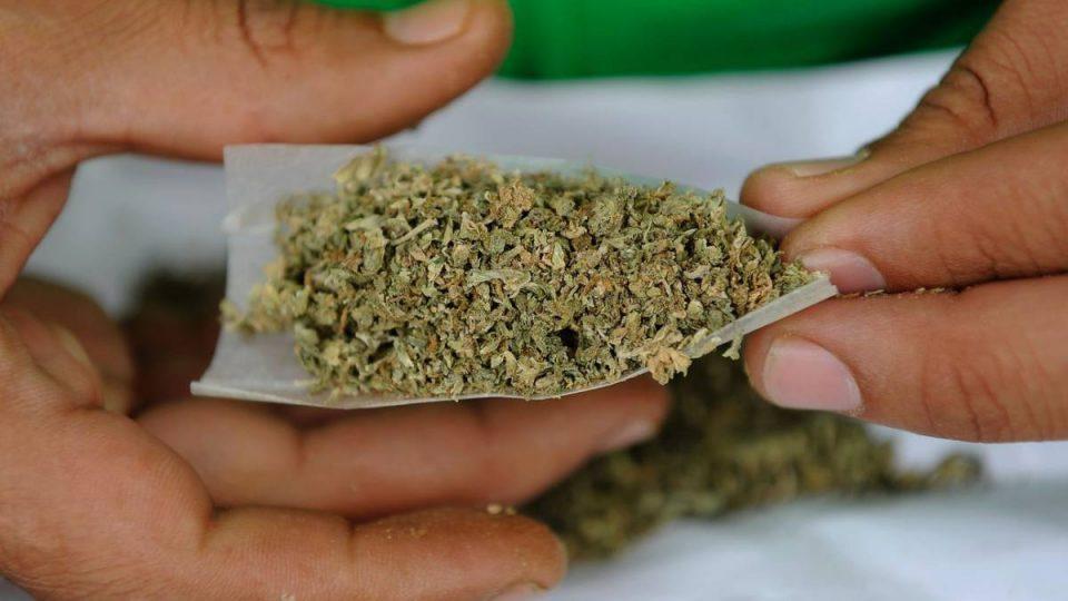 marihuana-2-960×540-960×540-1